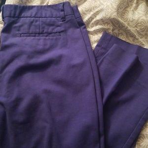 Rafaella Women's Straight Leg Dress Pants (Plus)