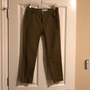 Denim - Cropped Olive Green soft cotton pants