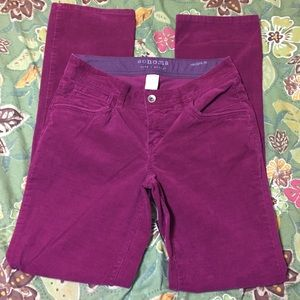 Sonoma brand Modern Fit cords size 4