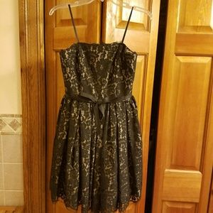 Roberto Rodriguez for target lace strapless dress