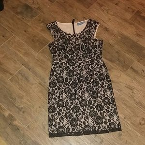 (26A) Cream and Black Lace Floral Dress