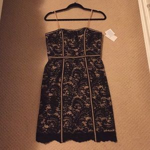 Perfect Holiday Dress! Aiden Black Lace Dress! NWT
