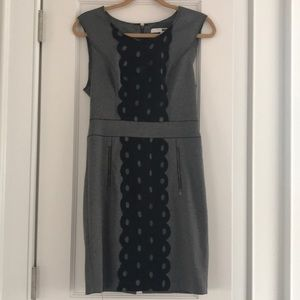Size 6 Tracy Reese grey dress with lace detail
