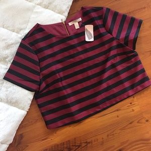 NWT Forever 21 Silky Striped Crop Top SIze L