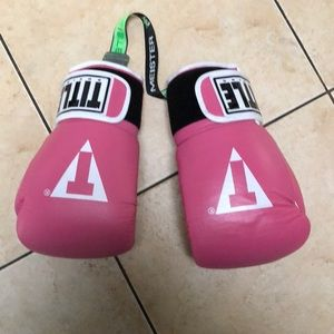 Title brand boxing mits with accessories