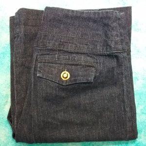 EUC Anthropolgie High Waist Jeans