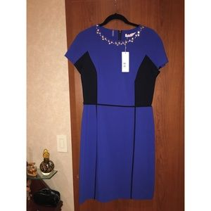 Rebecca Taylor Royal Blue Dress