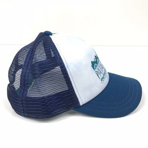 13de36fc549 Patagonia Accessories - Patagonia W s Femme Fitz Roy Interstate Hat Blue
