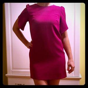 Gorgeous Cynthia Steffe purple dress, size 2