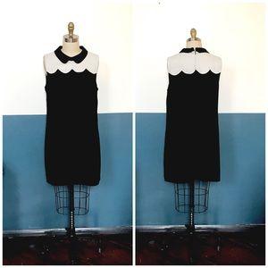 cece peter pan collar 60s inspired mod mini dress