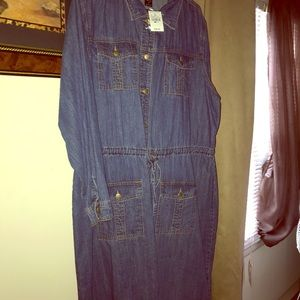 Brand New Long sleeve Denim dress