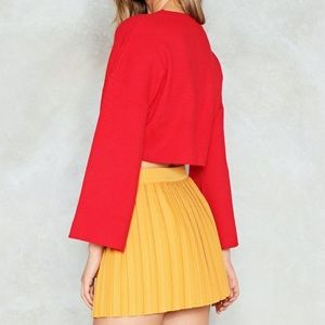 NWT Nasty Gal Pleated Skirt