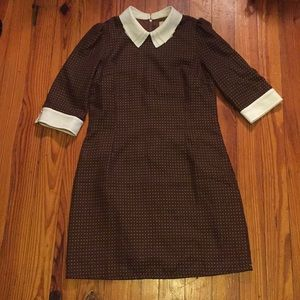 NWOT Miss Patina Brown polka dot dress!