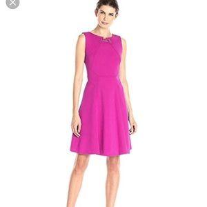 Fuscia Ivanka Trump Dress