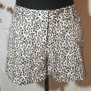 White house black market leopard print shorts