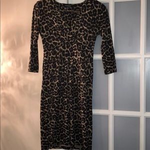 Dresses & Skirts - Chaus leopard print dress