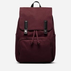 Everlane Burgundy Modern Snap Backpack