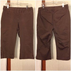 Women's Brown Size 18 Lane Bryant Capri Pants