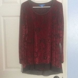 Simply Vera Vera wang velour sheer blouse