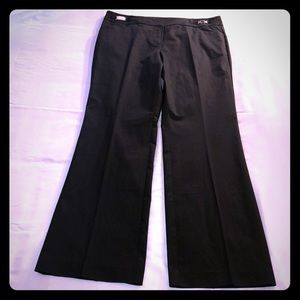 NWOT New York & Company 7th Avenue Collection Pant