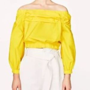 Zara Sleeve top
