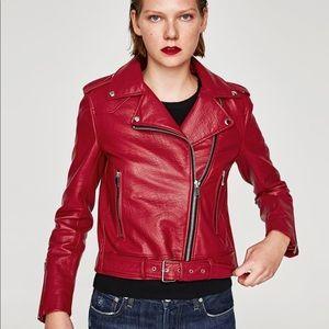 HP • Zara Biker Jacket •