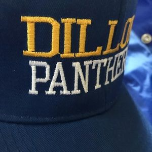 f17507d2f16b9 Other - DILLON PANTHERS Costume