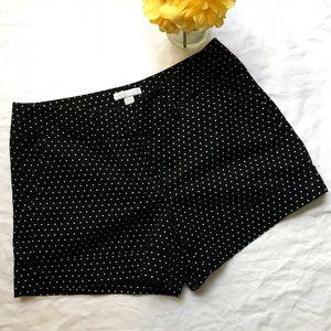 Woman's New York & Company Shorts