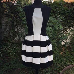 NWOT Eva Franco Dress