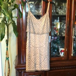 Adrianna Papell sequenced dress