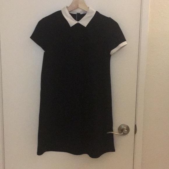 f2a9f852 Zara Dresses Trafalue Black Dress With White Collar Poshmark. Image 1 Of  Shirt ...
