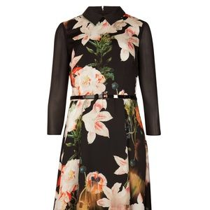 Ted Baker Opulent Bloom collared sleeved dress, 2