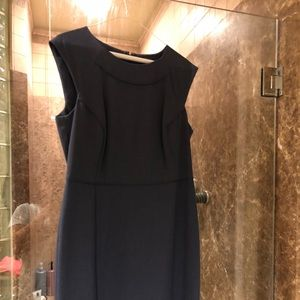 The Limited Collection Navy Dress