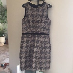 Gray dress from Taylor