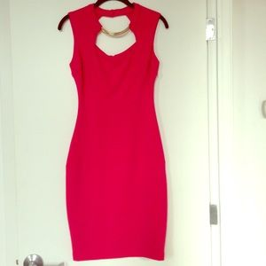 Pink Fitted Dress with Gold Necklace Detail Sz 4