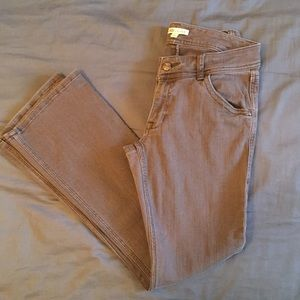 CAbi brown jeans