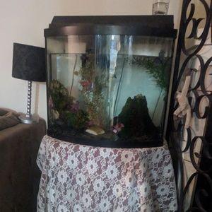 25 gallon bow front Fish tank