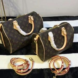 Louis Vuitton Monogram Canvas Speedy Bag