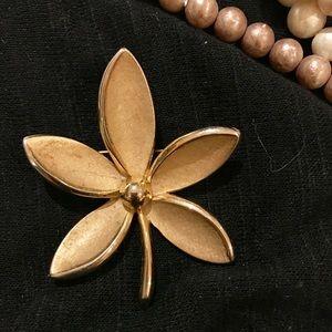 Jewelry - Beautiful Trifani Brooch/Pin