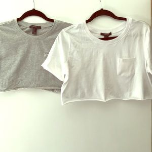 2/$6 super cropped t shirts
