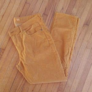 Pilcro and the Letterpress Corduroy Pants Size 32