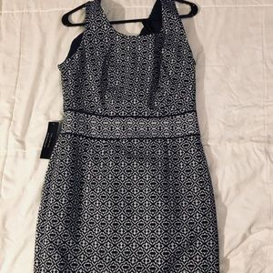 The Limited navy and white dress BNWT size 8