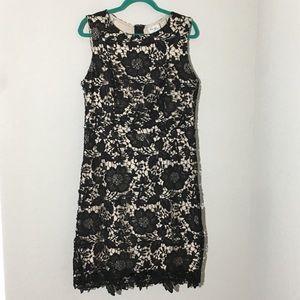 ECI Lace Bodycon Dress Black & Beige Holiday Sz 6
