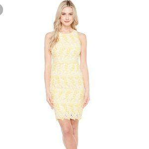 [Maggy London] Yellow Lace Scalloped Dress