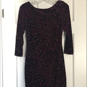 Cache Long Sleeve Pencil Dress Leopard Print Sz 6