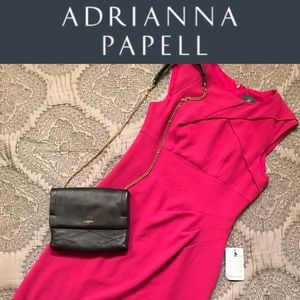 NWT Adrianna Papell Sheath Dress