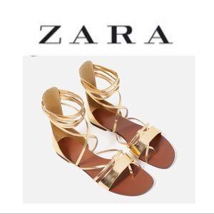 Zara basics gold gladiator sandals NWT