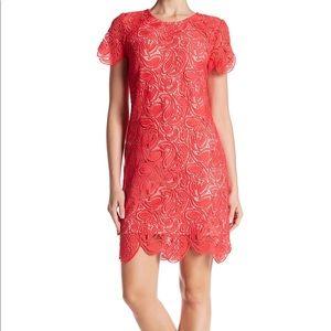 Shoshanna Rae crochet dress pink size 4 NWT