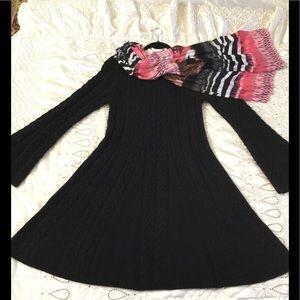 BCBG Maxazria Black Sweater Fit and Flare Dress