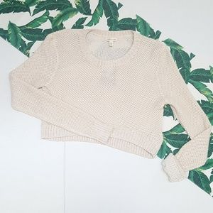 Silence + Noise Cropped Thin Knit Sweater